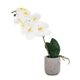 ORCHID Orchidea sztuczna ecru 9x9x43 cm