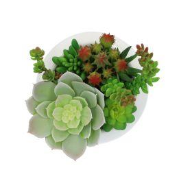 LAYO Mini ogródek 16 cm