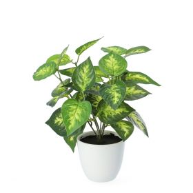 EDERA Sztuczna roślina 20 cm
