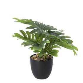 PALMS Roślina sztuczna 29 cm