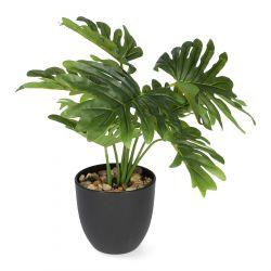 PALMS Roślina sztuczna 13x41 cm