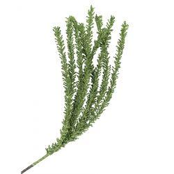 TILIA Kwiat sztuczny zielony 76 cm